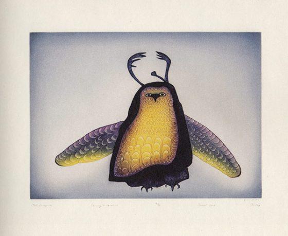 Owl-Incognito